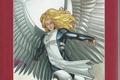 DSS-Angel