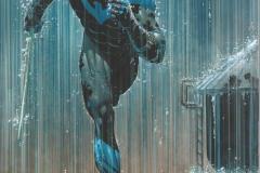 2019-06-Nightwing-7